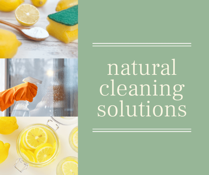 pic showing natural cleaning products